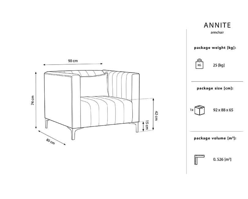 MIC_ARM_B2_2_ANNITE3-TECHS.jpg